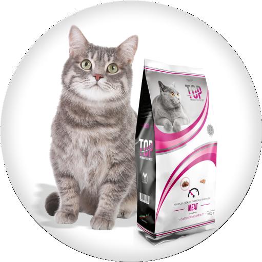 cibo secco gatto manzo top gatto